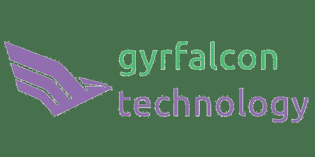 Gyrfalcon Technology